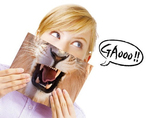Animalmaskbookcover01