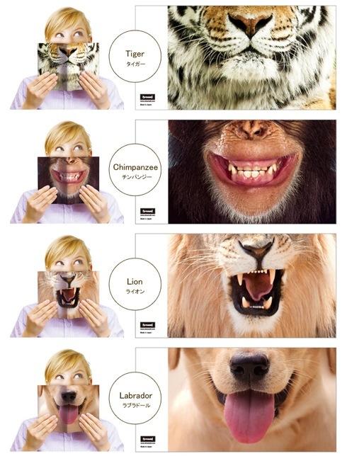 Animalmaskbookcover03