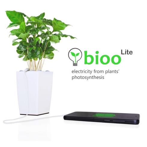 Bioo01
