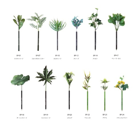 Bonboogbotanicalpen02