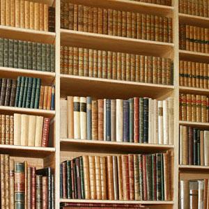 Bookorganizetips03
