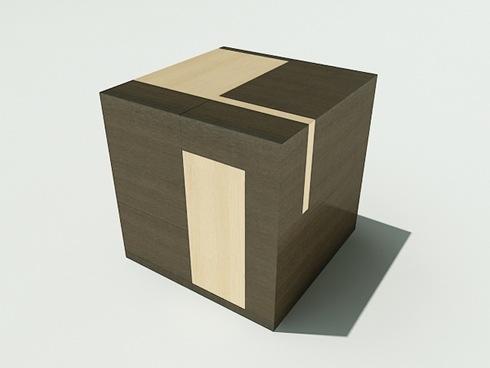 braincube01.jpg