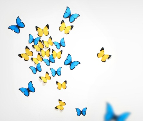 Butterflydecoit02