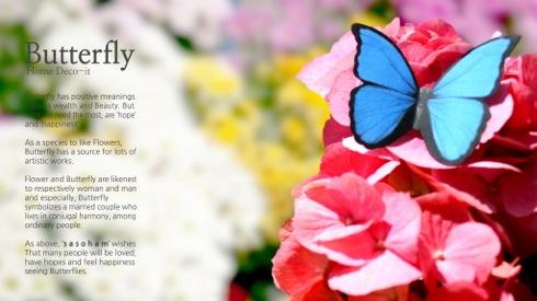 Butterflydecoit03