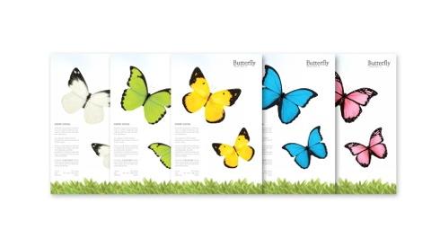 Butterflydecoit05
