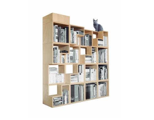 猫が遊べる本棚【The Cat-Library】
