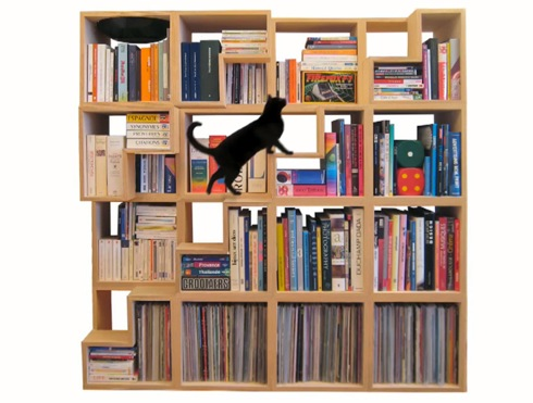 Catlibrary04