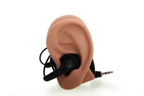 Earheadphonecabletidy03