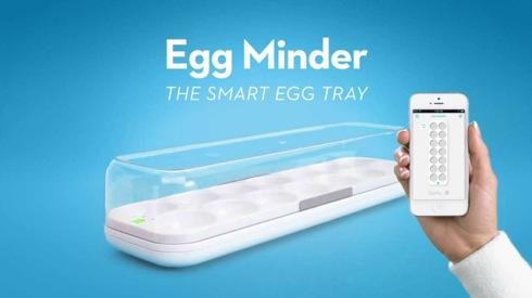 Eggminder02
