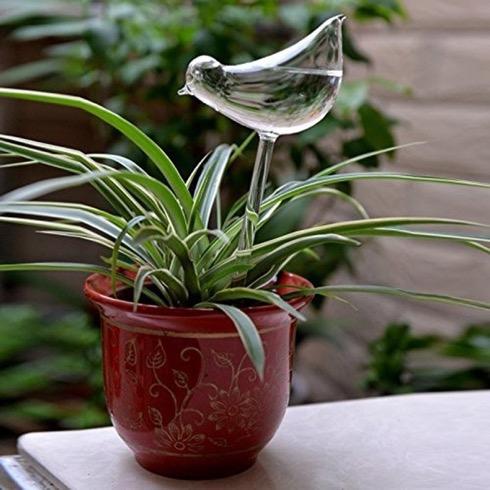 Glassplantwateringbird03