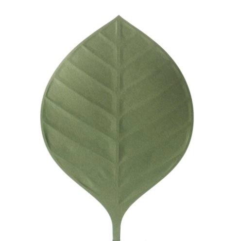 Hauchiwa02