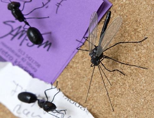 Insectpushpins01