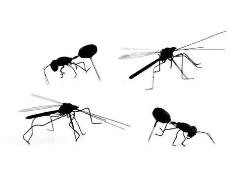 Insectpushpins02
