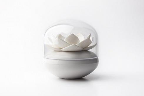 Lotuscottonbud04