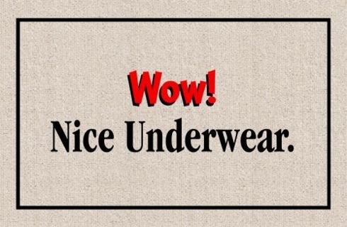 Niceunderweardoormat05
