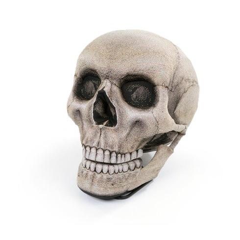 Skullchair02
