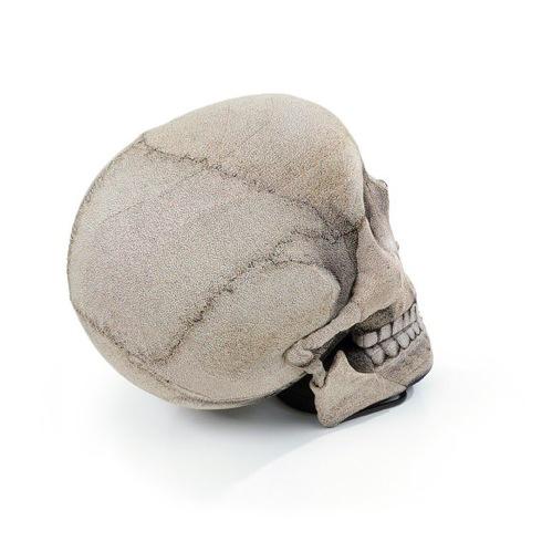 Skullchair03