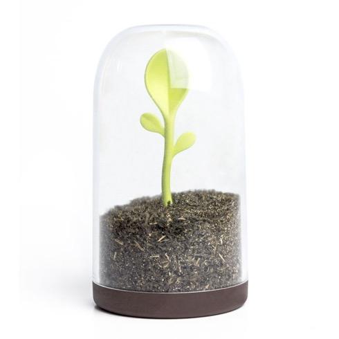 Sproutjar02
