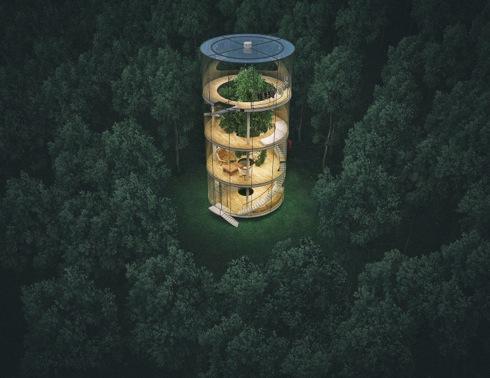 Treeinthehouse02
