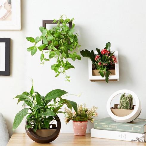 Wallmountedplanter01
