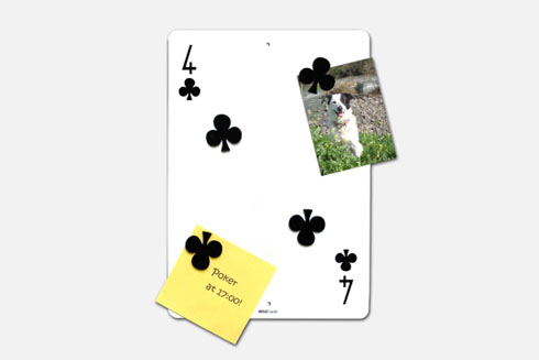 Wildcard01