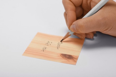 Woodpiecepocketmemo03