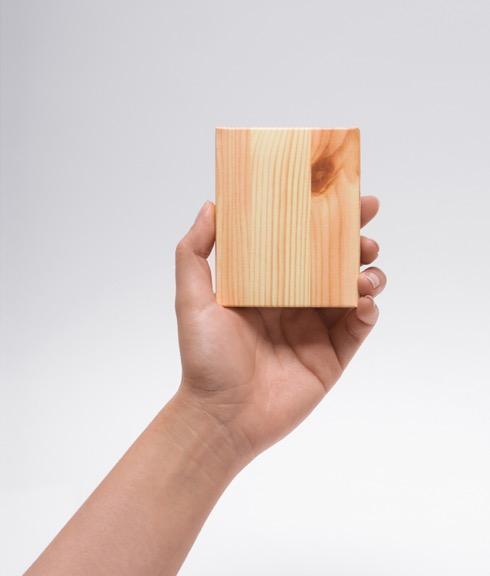Woodpiecepocketmemo05